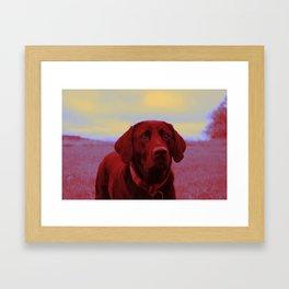 Clifford Framed Art Print