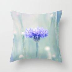 Hidden secrets Throw Pillow