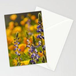 Purple Lupine and Golden Poppies Stationery Cards