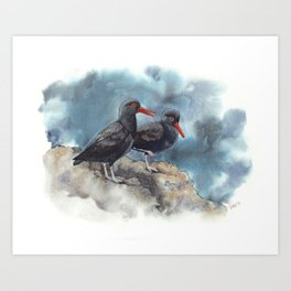 Twitterpated Oystercatchers Art Print