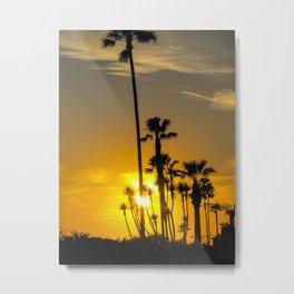 Tall Palms Metal Print