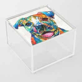 Colorful Dog Pit Bull Art - Happy - By Sharon Cummings Acrylic Box