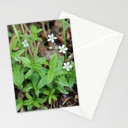 Many Mini Wildflowers Stationery Cards