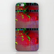 La Porta Ideale iPhone & iPod Skin