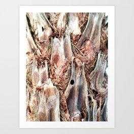 Textured Tree Trunk Art Print