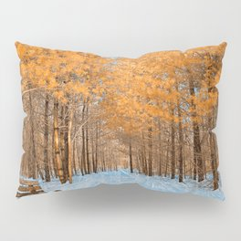 Burning Ice Forest Trail Pillow Sham