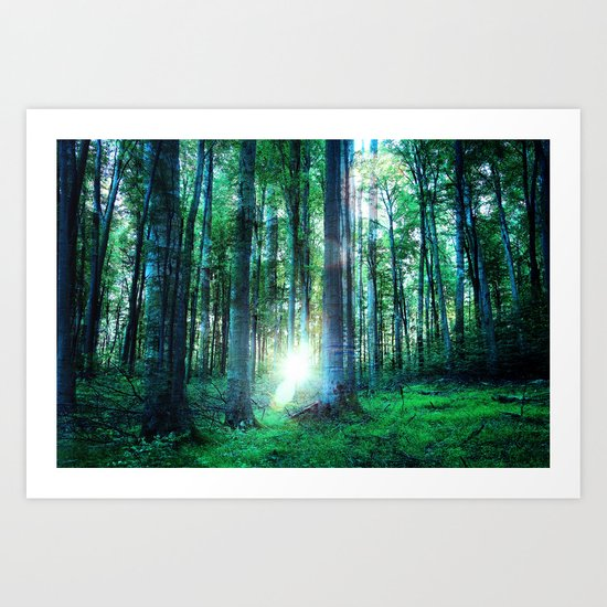 Range The Woods Art Print