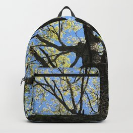 Forest Therapy Backpack