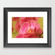Pink Pastel 32 Framed Art Print