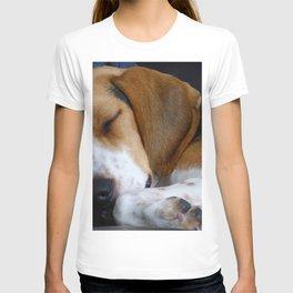 Beagle Dog Sleeping T-shirt