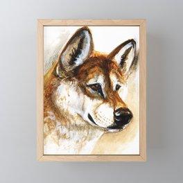 Dingo realistic Framed Mini Art Print