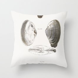 290 Mya arenaria 291 Solemya borealis 292 Solemya velum  from Zoology of New York (1842-1844) by Throw Pillow