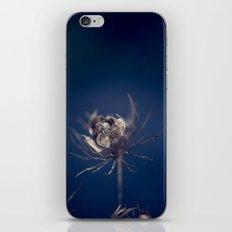 Before the Wind Blew iPhone & iPod Skin