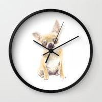 chihuahua Wall Clocks featuring Chihuahua by jo clark