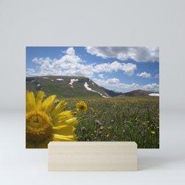Field of Flowers on The Colorado Trail 2016 Mini Art Print
