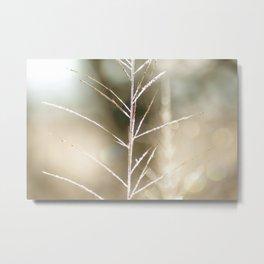 """""""Frost on Grass 2"""" Nature Art by Murray Bolesta Metal Print"""