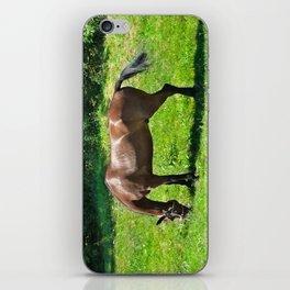 A Grazing Horse iPhone Skin