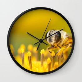 Pollen Feast Wall Clock