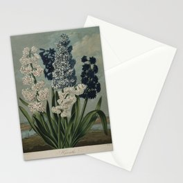 Edwards, S. (1768-1819) - The Temple of Flora 1807 - Hyacinths Stationery Cards