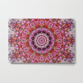 Pink and Red Petunias Mandala Metal Print