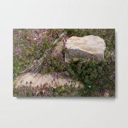 Rocks and Bugle Metal Print