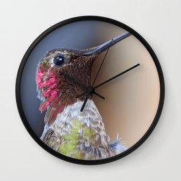 Bird color 5 Wall Clock