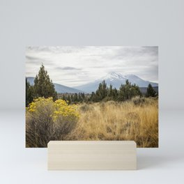 Taking the Scenic Route Mini Art Print