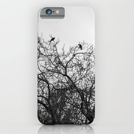 A murder of crows sitting in a tree iPhone Case