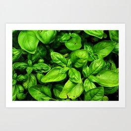 Raw Pesto Art Print