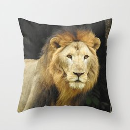 Lion the King of Beasts Throw Pillow