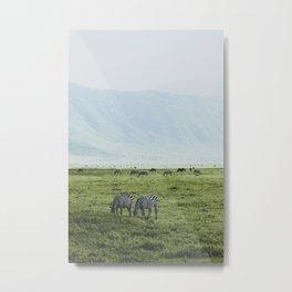 Ngorongoro Crater, Tanzania XI Metal Print