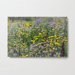 Native Prairie Flowers Metal Print