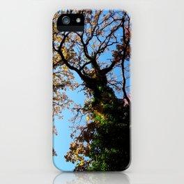 Rainbow Roots iPhone Case