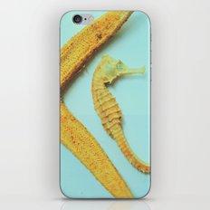 My little bit of ocean iPhone & iPod Skin