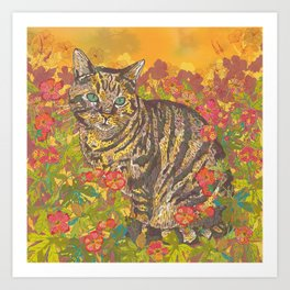 Tabby Afternoon in the Sun Art Print