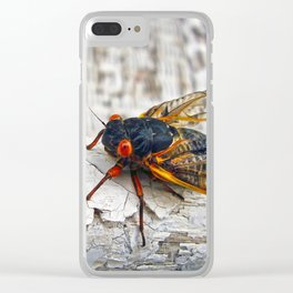 Red Eyed Cicada Clear iPhone Case