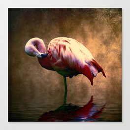 Flamingo Stance 2 Canvas Print