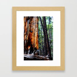 In The Zone. Framed Art Print