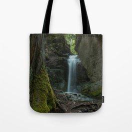 Beautiful Small Waterfall Tote Bag