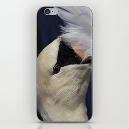 The Shy Swan iPhone Skin