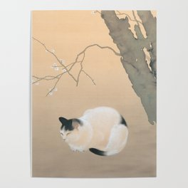 Cat and Plum Blossoms Japanese Painting Poster
