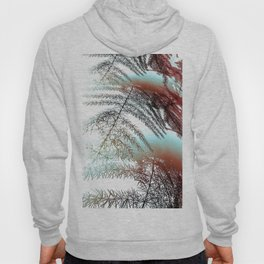 Abstract Of Asparagus Fern Hoody