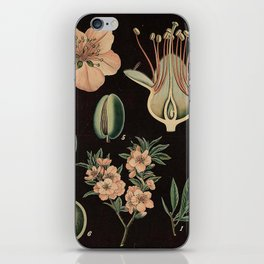Botanical Almond iPhone Skin