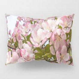 Pink Spring Blooms Pillow Sham