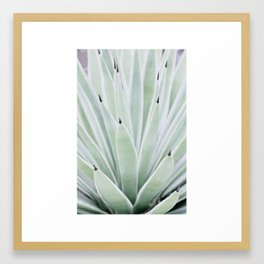 Mint Serenity Framed Art Print