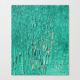 Shedding Green Canvas Print
