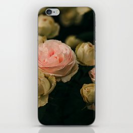 Korean Roses iPhone Skin