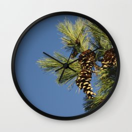 Pine cones and branches against a blue autumn sky Wall Clock