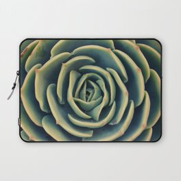Echeveria x Imbricata Succulent Laptop Sleeve