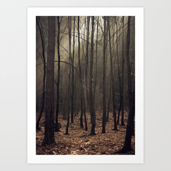 Winter magic forest Art Print